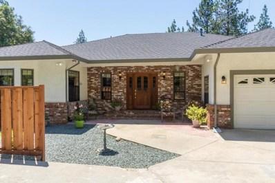 21735 Homestead Road, Pine Grove, CA 95665 - MLS#: 17038771