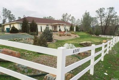 4785 Green Valley Road, Shingle Springs, CA 95682 - MLS#: 17045861