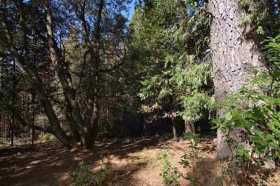 23379  Valley View Drive, Pioneer, CA 95666 - MLS#: 17057704