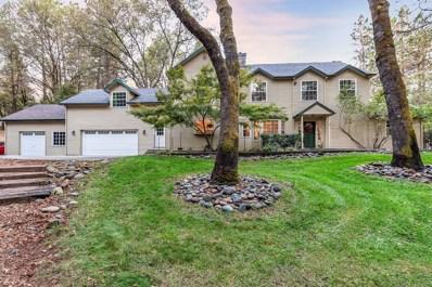2043 Oxbow Court, Meadow Vista, CA 95722 - MLS#: 17063966