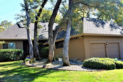 117 Wild River Lane, Folsom, CA 95630 - MLS#: 17070668