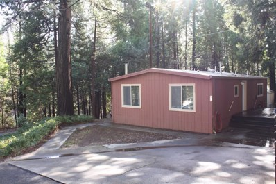 21200 Todd Valley Rd UNIT 12, Foresthill, CA 95631 - MLS#: 17074405