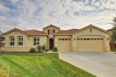 18041 Blue Winged Court, Woodland, CA 95695 - MLS#: 17078060