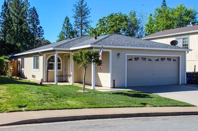 110 Terrace View Circle, Jackson, CA 95642 - MLS#: 17600594
