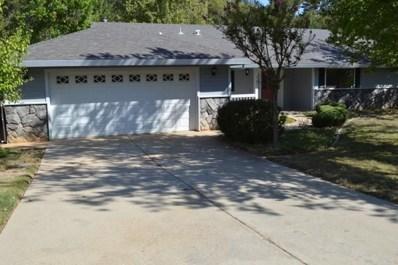 21621 Gayla Drive, Pine Grove, CA 95665 - MLS#: 17601206