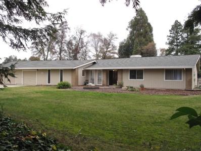 10451 Aleilani Lane, Elk Grove, CA 95624 - MLS#: 18000039