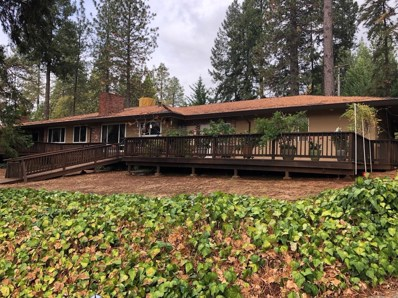 2941 Five Mile Road, Placerville, CA 95667 - MLS#: 18000261