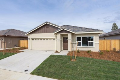 411 Laurel Court, Ione, CA 95640 - MLS#: 18000447