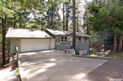 5451 Buttercup Drive, Pollock Pines, CA 95726 - #: 18001289