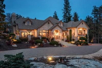 16320 Winchester Club Drive, Meadow Vista, CA 95722 - MLS#: 18001880