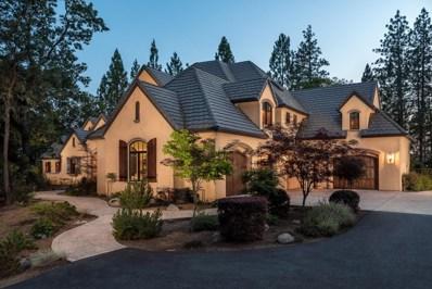 1339 Shady Tree Lane, Meadow Vista, CA 95722 - MLS#: 18002532