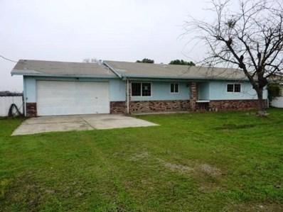 9013 S Endow Road, French Camp, CA 95231 - MLS#: 18003246