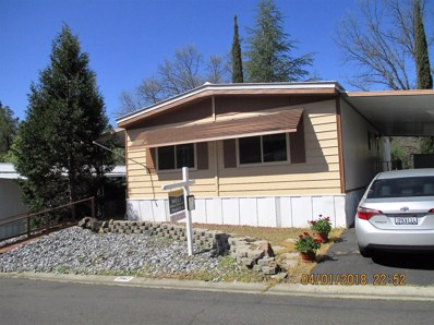 2867 Hidden Springs Circle UNIT 69, Placerville, CA 95667 - MLS#: 18003813