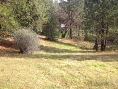 W 6045  Red Berry Hill Lane, Placerville, CA 95667 - MLS#: 18004426