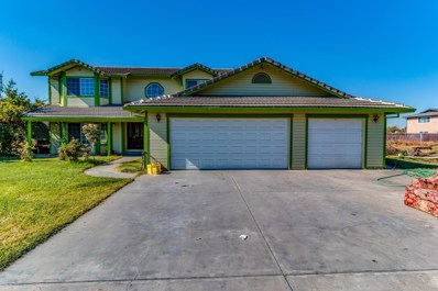9127 S Endow Road, French Camp, CA 95231 - MLS#: 18004776