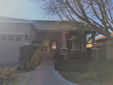 1519 Dutch Corner Drive, Newman, CA 95360 - MLS#: 18005590