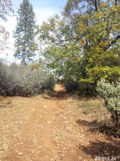 0  Canchalagua Drive, Pollock Pines, CA 95726 - MLS#: 18006108