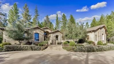 16310 Winchester Club Drive, Meadow Vista, CA 95722 - MLS#: 18006173