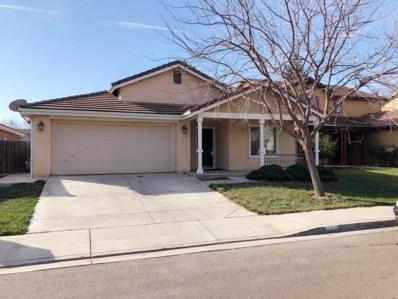 1144 Tern Way, Patterson, CA 95363 - MLS#: 18007714