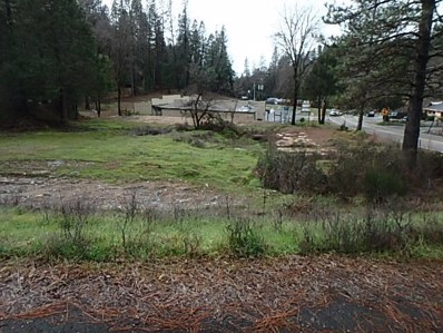 4876  Black Oak Mine Road, Garden Valley, CA 95633 - MLS#: 18008003