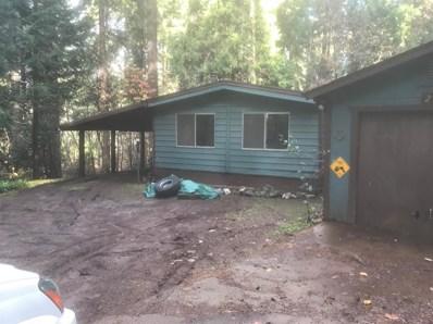 2909 Elkhorn Mill Road, Pollock Pines, CA 95726 - MLS#: 18008202