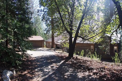 20110 Hosmer Mine Court, Foresthill, CA 95631 - MLS#: 18008405
