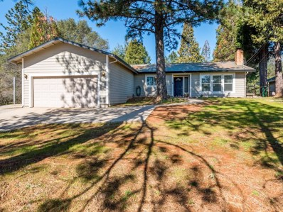 1261 Coon Court, Cool, CA 95614 - MLS#: 18008470