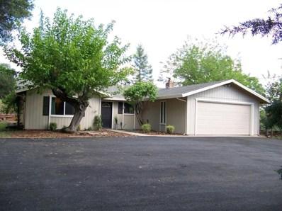 4241 Oak View Drive, Pilot Hill, CA 95664 - MLS#: 18009195