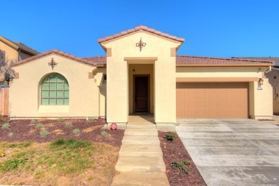 1201 Imperial Lily Drive, Patterson, CA 95363 - MLS#: 18009420