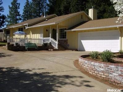 5534 Pony Express Trail, Pollock Pines, CA 95726 - MLS#: 18010115