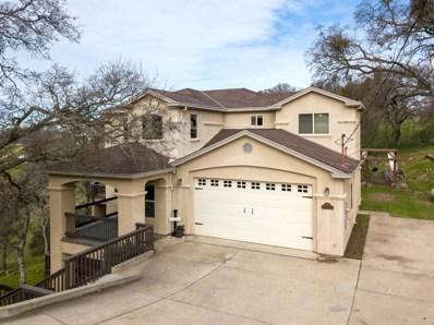 5484 Rippon, Valley Springs, CA 95252 - MLS#: 18010779