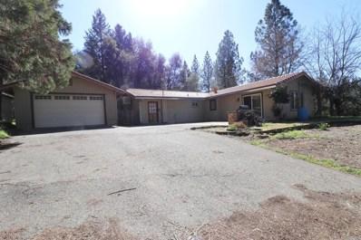 16455 Hale Road, Fiddletown, CA 95629 - MLS#: 18011361