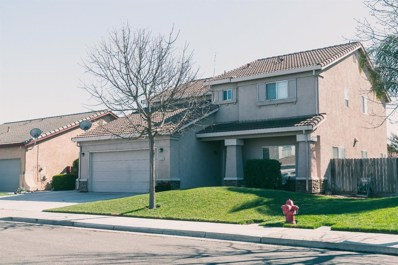 1136 Duck Blind Circle, Newman, CA 95360 - MLS#: 18011589