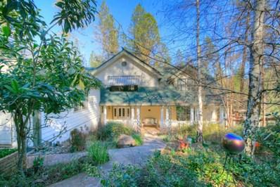 17479 Blue Bike Lane, Meadow Vista, CA 95722 - MLS#: 18011738