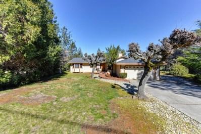 22510 Sunset Ridge Drive, Auburn, CA 95602 - MLS#: 18012035