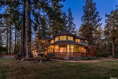 500 Pinetree, Colfax, CA 95713 - MLS#: 18012270