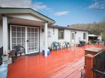12487 Creek View Drive, Grass Valley, CA 95949 - MLS#: 18012278