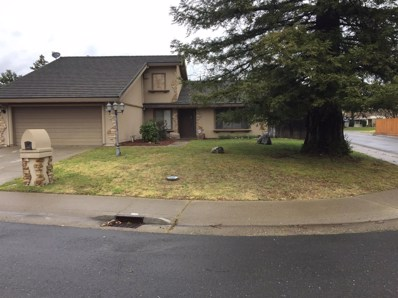 11217 Cedar River Court, Rancho Cordova, CA 95670 - MLS#: 18012730