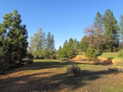 3012  Legends Drive, Meadow Vista, CA 95722 - MLS#: 18012872