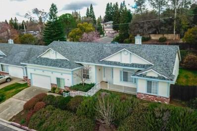 12605 Town View Drive, Auburn, CA 95603 - MLS#: 18013091