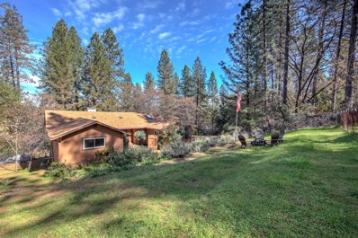 14121 Toma Ln, Pine Grove, CA 95665 - MLS#: 18014290
