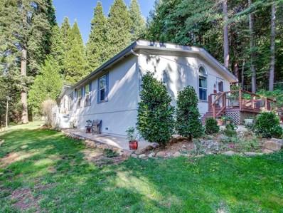 5296 Andrews Lane, Camino, CA 95709 - MLS#: 18014334