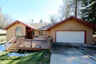 22220 Valley View Court, Pine Grove, CA 95665 - MLS#: 18014364