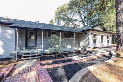 13809 Shadow Glen Court, Pine Grove, CA 95665 - MLS#: 18014514