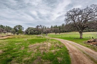 19228  Buck Mountain Road, Grass Valley, CA 95949 - MLS#: 18015005