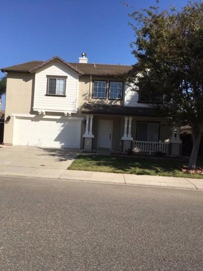 3336 Cardinal Flower Avenue, Modesto, CA 95355 - MLS#: 18015006