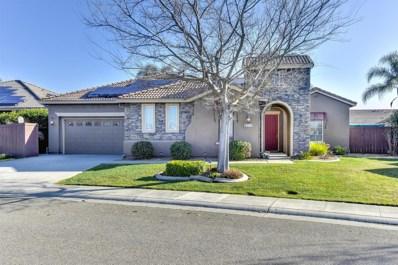 8313 Almadine Drive, Sacramento, CA 95829 - MLS#: 18015239