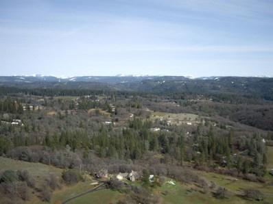 14  Mount Olive, Grass Valley, CA 95945 - MLS#: 18015361