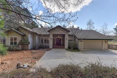 11603 Bernadine Court, Grass Valley, CA 95949 - MLS#: 18015386