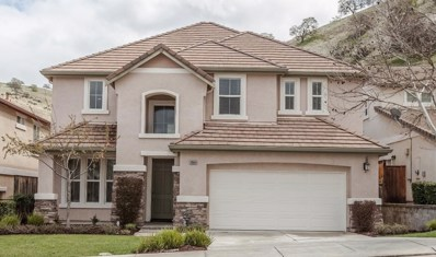 20664 Golf Canyon Court, Patterson, CA 95363 - MLS#: 18016133